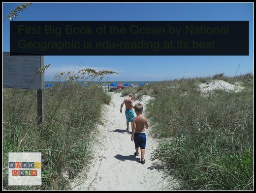 First Big Book of the Ocean is edu-reading at its best 3