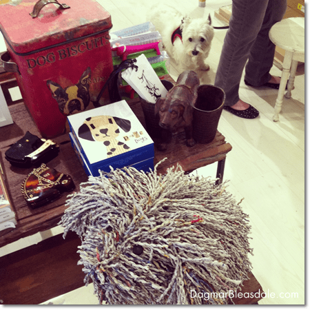 dog in Papertrail store