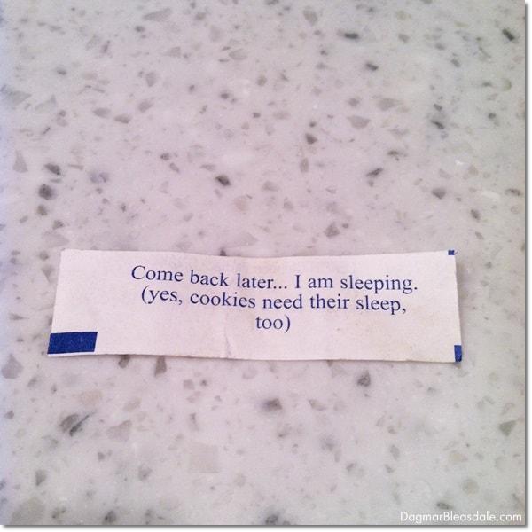 cheeky fortune cookie. DagmarBleasdale.com