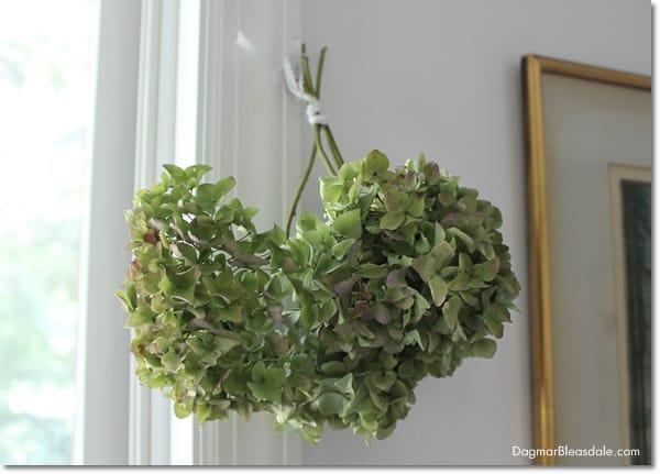 How to Dry Hydrangeas, DagmarBleasdale.com