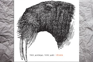 The Animal you are