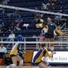 Tarah Murrey (4) leads the No. 1 Bears as they face bitter rival Stanford in the Big Spike.