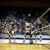 The Bears, who sit atop the Pac-12 standings, are leading the conference in hitting percentage.
