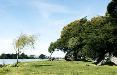 Berkeley Aquatic Park