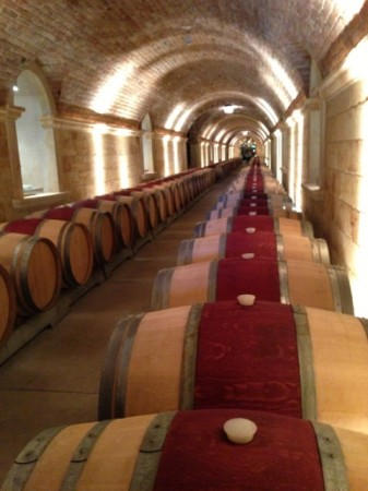 Hall Winery - The long hallway of the dimly lit cave lined with wooden oak wine barrels