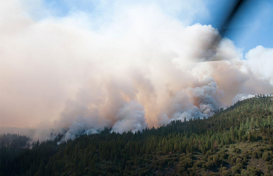 fire.Julie-Avey