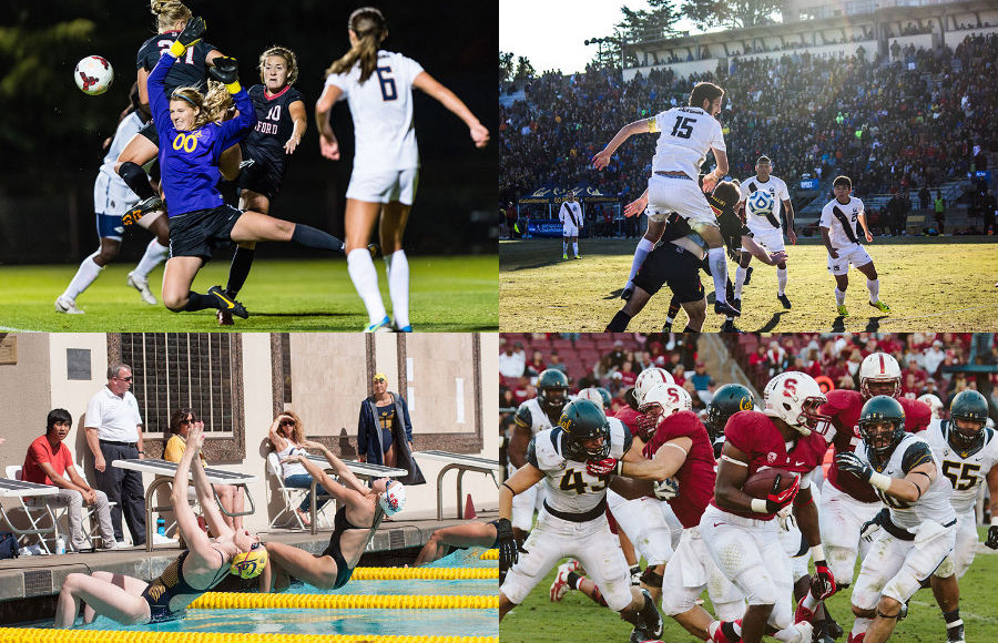Varying sports from men's soccer to women's swim took the Fall 2013 Sports awards. (Credit from top left: Jim Shorin/ISIphotos.com/Courtesy, Carli Baker/File, Matt Lee/File, Katherine Chen/File).