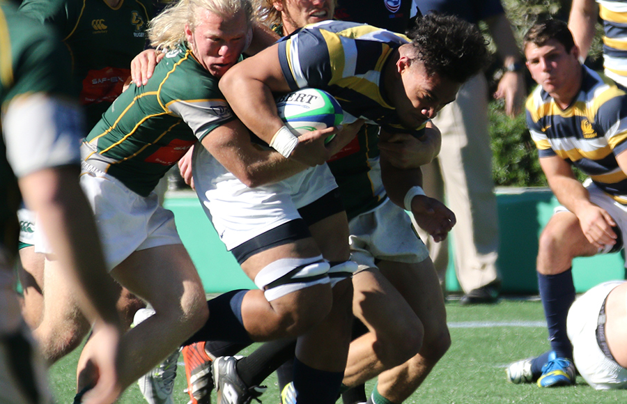 Cal rugby routs Cal Poly, 76-3, in home opener