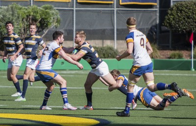 rugby_pdowney_file