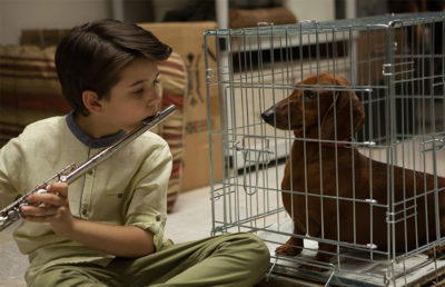 """Wiener-Dog"" 