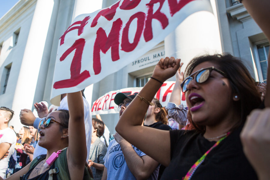 Protestors gathered on the Mario Savio steps in front of UC Berkeley's Sproul Hall in support of the school's undocumented students on Wednesday, November 9, 2016 in Berkeley, Calif. (Rachael Garner/Senior Staff)