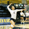 volleyball_alangford_file