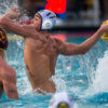 waterpolo_pdowney_file