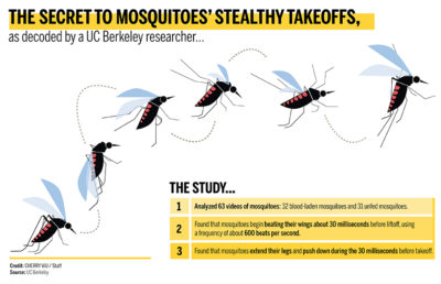 coloredited_cherrywu_mosquito_newsinfographic