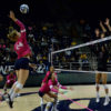 volleyball_sallydowd_file-copy