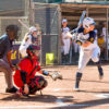softball_alexandranobida_staffjpg-copy