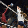 volleyball_ketki-samel_file-698x450