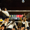volleyball_leonie-leonida_file-698x450-copy