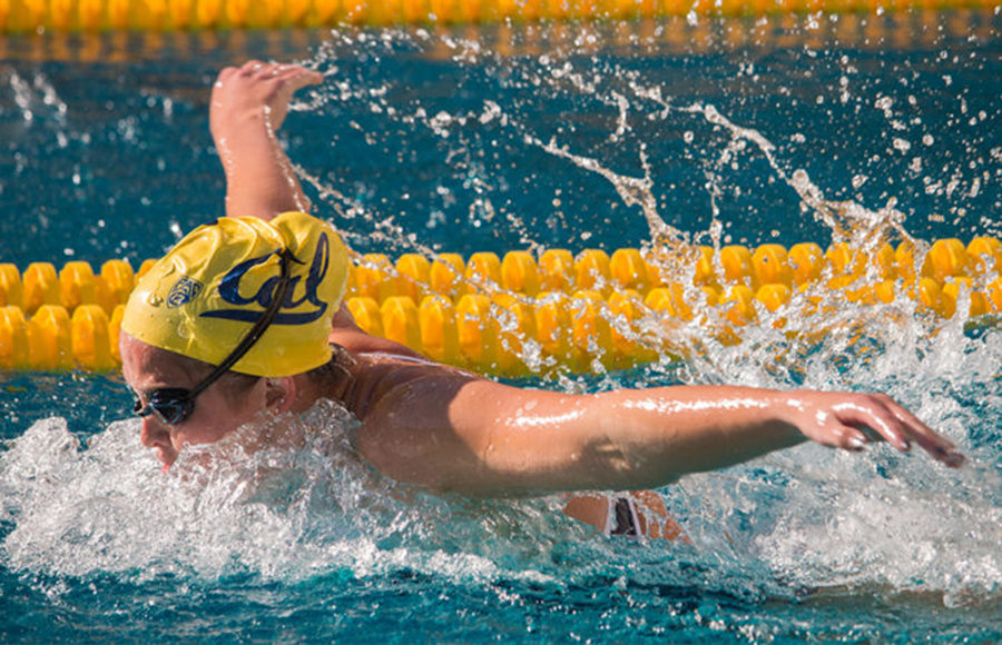 Final early-season test in store for Cal women's swim on sport store, fun store, jumping store, gardening store, crafts store, billiards store, food store, wrestling store, water store,
