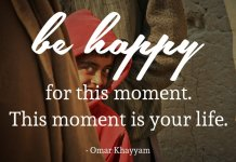 Be happy for this moment. This moment is your life. - Omar Khayyam