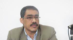Press Syndicate chairman, Diaa Rashwan