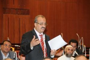 Islamist leader Mohamed Al-Beltagy (DNE File Photo)