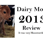Dairy Moos 2013 year-end Review