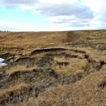 sloughing, Chaffen Creek, Alberta