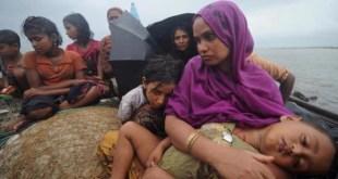 Pengungsi Rohingya (inet)