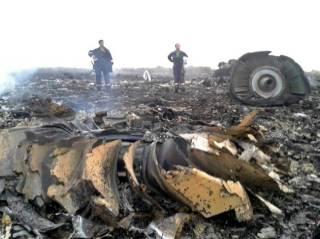 Puing-puing pesawat Malaysia Airlines MH-17 yang jatuh di Grabovo, wilayah Donetsk, Ukraina (17/7).  (metro.co.uk)