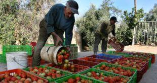 Israel dituduh gagal lindungi pekerja asing (bbc.co.uk)