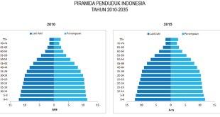 Piramida Penduduk Indonesia tahun 2010 dan 2015. (Dita Anggraini)