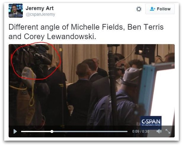 Michelle Fields Hoax