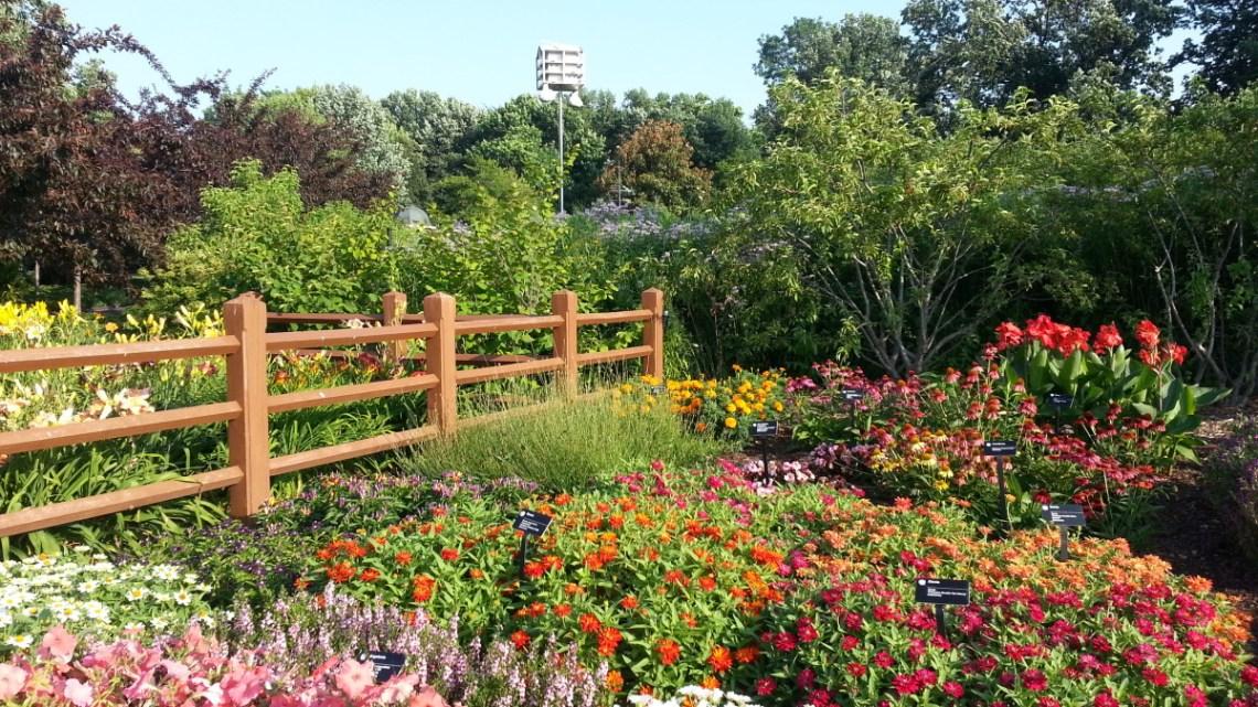 Missouri Botanical Garden - Flowers