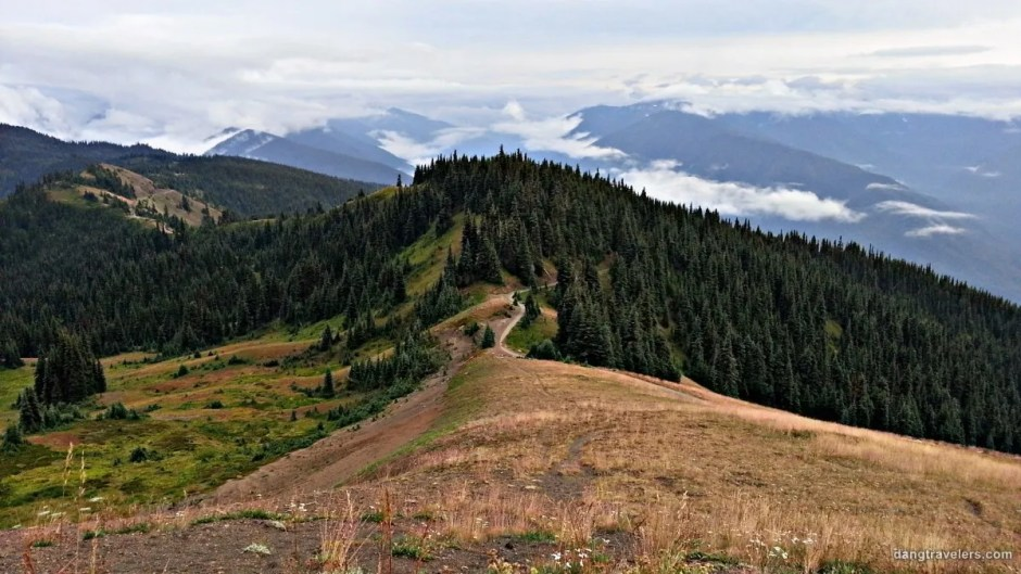 Klahhane Ridge - Olympic National Park