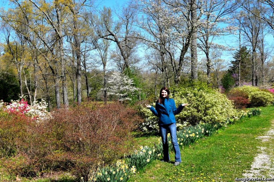 Pinecrest Azalea Gardens Cape Girardeau
