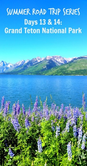Grand Teton National Park Pin