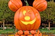 passholder-halloween-00-full