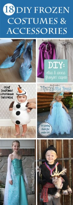 18 DIY Frozen Costumes and Accessories