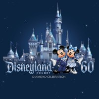 Top 5 Things About Disneyland Resort's 24-Hour Day