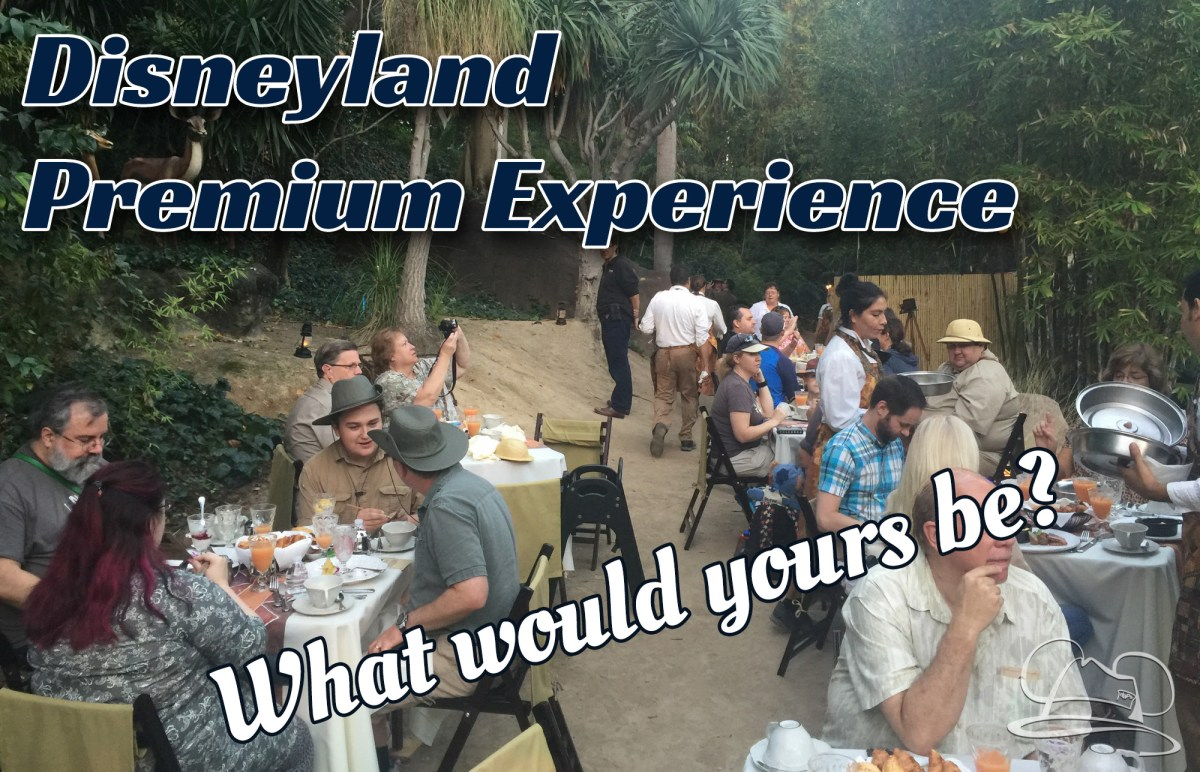 Disneyland Premium Experience - What Would You Want?