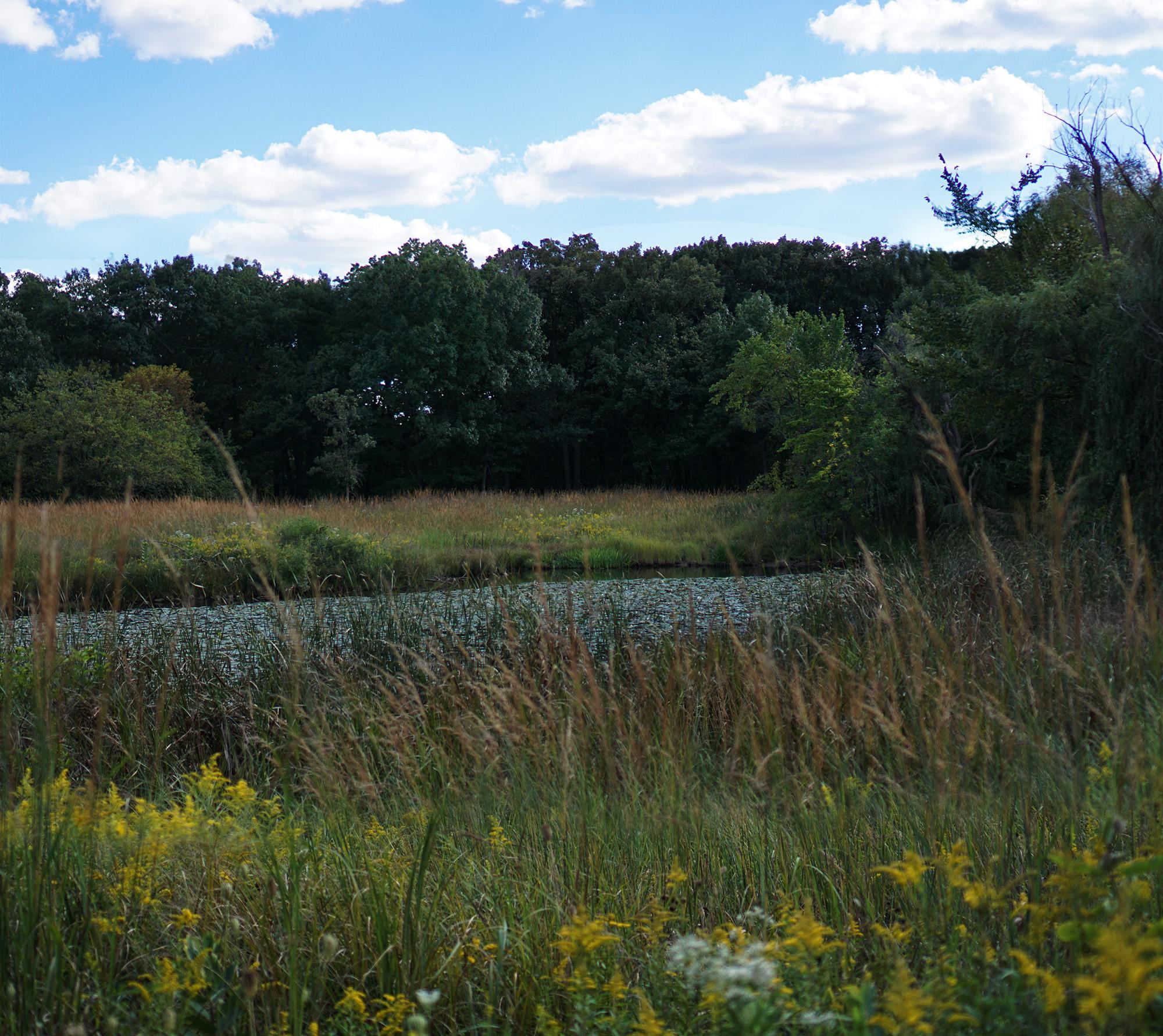 north-park-village-nature-center-1223