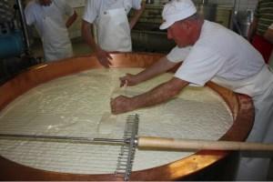 Emmentaler Käse Molke Käsebruch