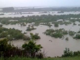 Überflutung bei Sandomierz