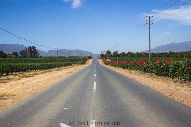 on-the-road-37-von-44