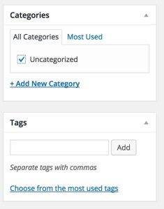 Screenshot 15 - posts and pages - categories and tags (2)