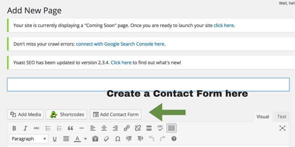 Screenshot 16 - Posts and pages - contact form