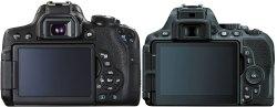 Small Of Nikon D3300 Vs D5500