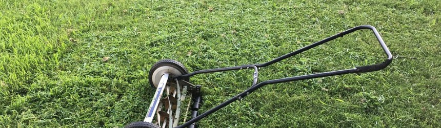 3ew lawn mower