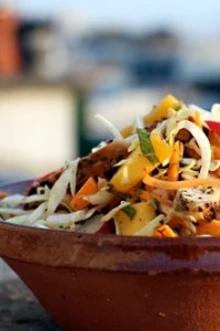 chicken mango cole slaw salad